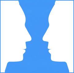 social cognition essay