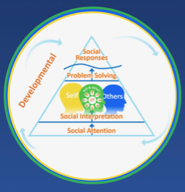 Social Thinking-Social Competency Model